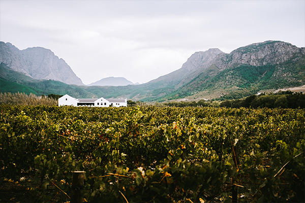 Garden Route Uncovered - Cape Dutch house in the mountains