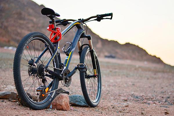 Table Mountain biking adventure - image of bike